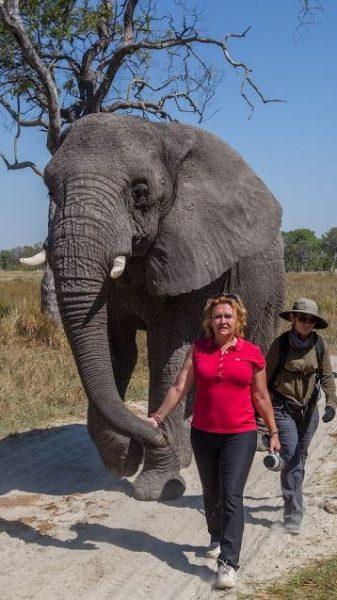 Fillere adanan bir yaşam 4