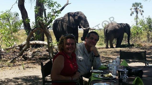Fillere adanan bir yaşam 6
